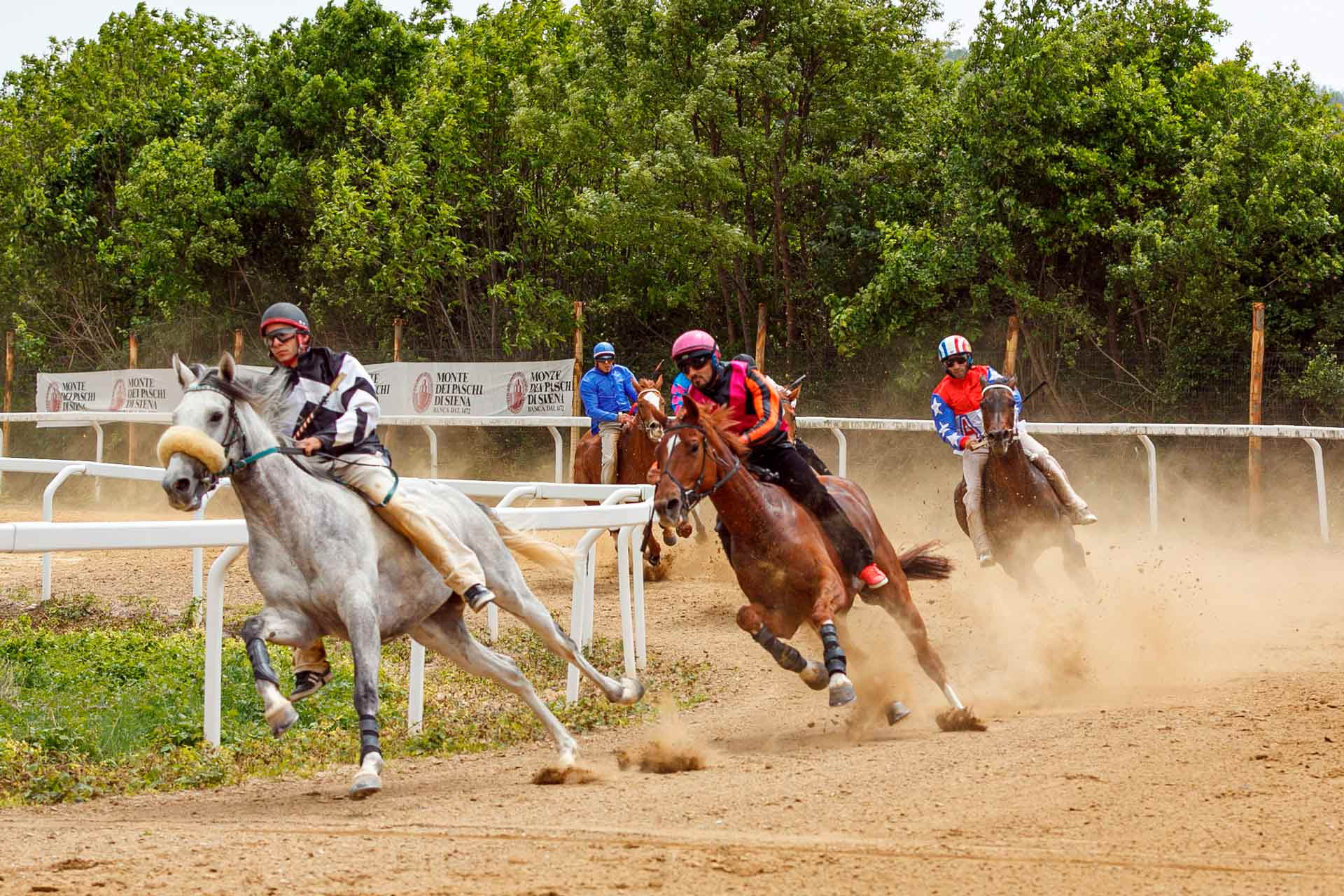 TRAINING TRIAL RUNS - The race allows professionals to check the behavior of the horses on the tuff and on a path characterized by 90 degrees curves and slopes completely identical to those present in Piazza del Campo in Siena.