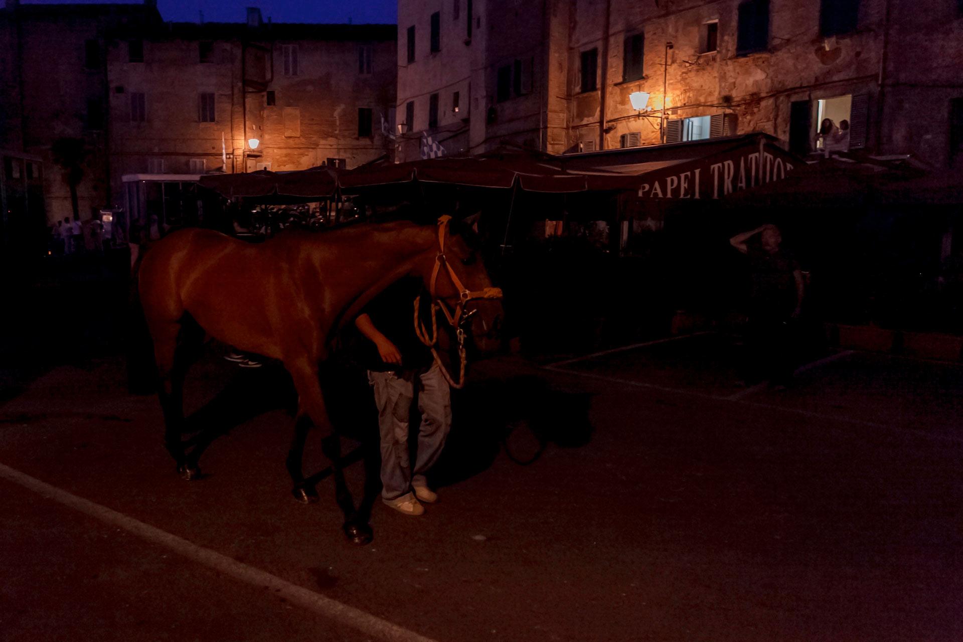LES COURSES DE NUIT - Nous y voil?, les jours du Palio sont ? nos portes. Rendez-vous avec Barbaresco ? l'aube sur la Piazza del Mercato. C'est l? que tous les chevaux arrivent ? bord de leurs fourgons ?quip?s pour un transport en toute s?curit?.