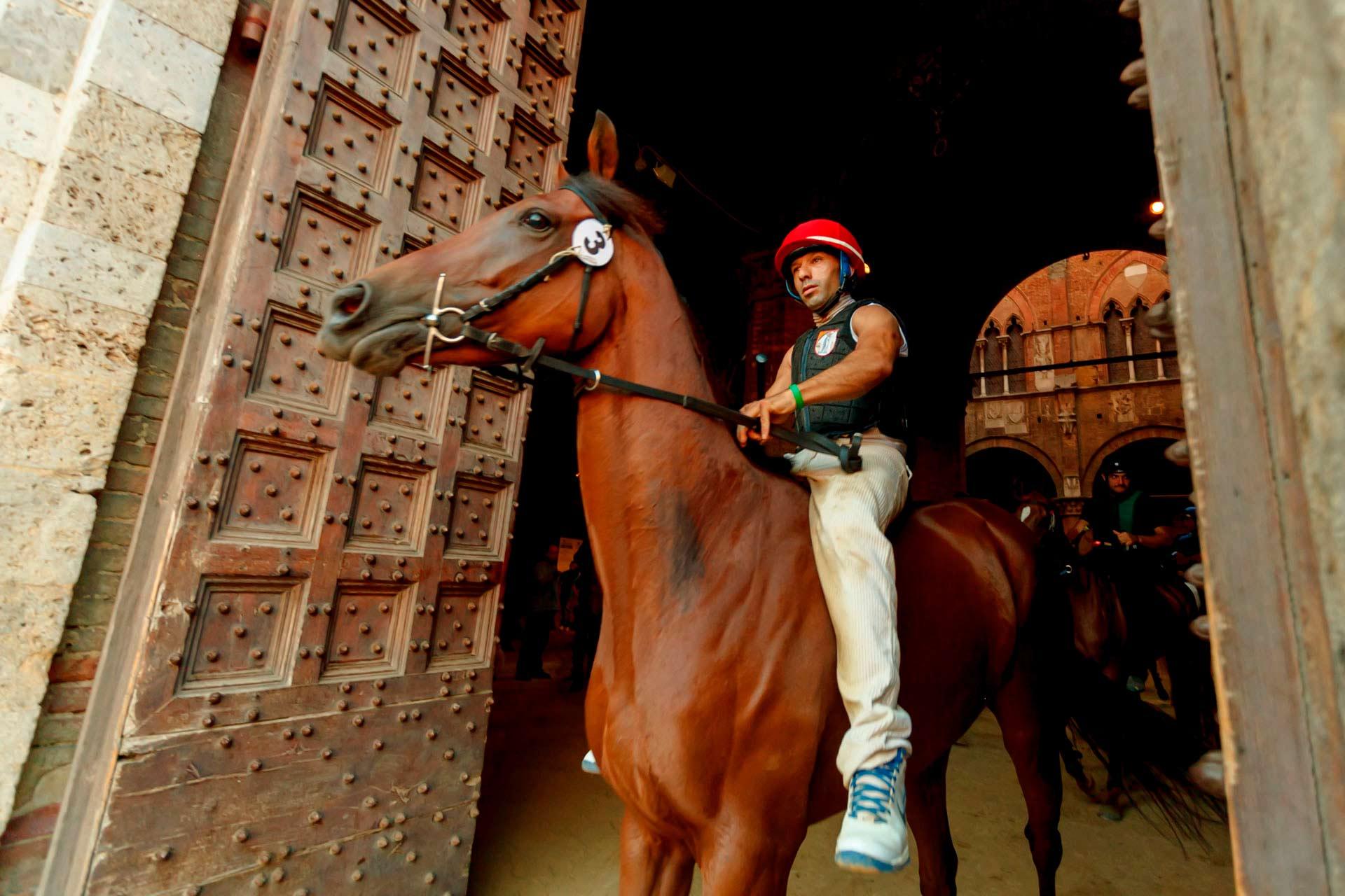 """LA NUIT RUNS - La premi?re """"batterie"""" est pr?te ? entrer sur le terrain. Tous les chevaux portent un signe num?rot? pour leur identification attach? ? la bride."""