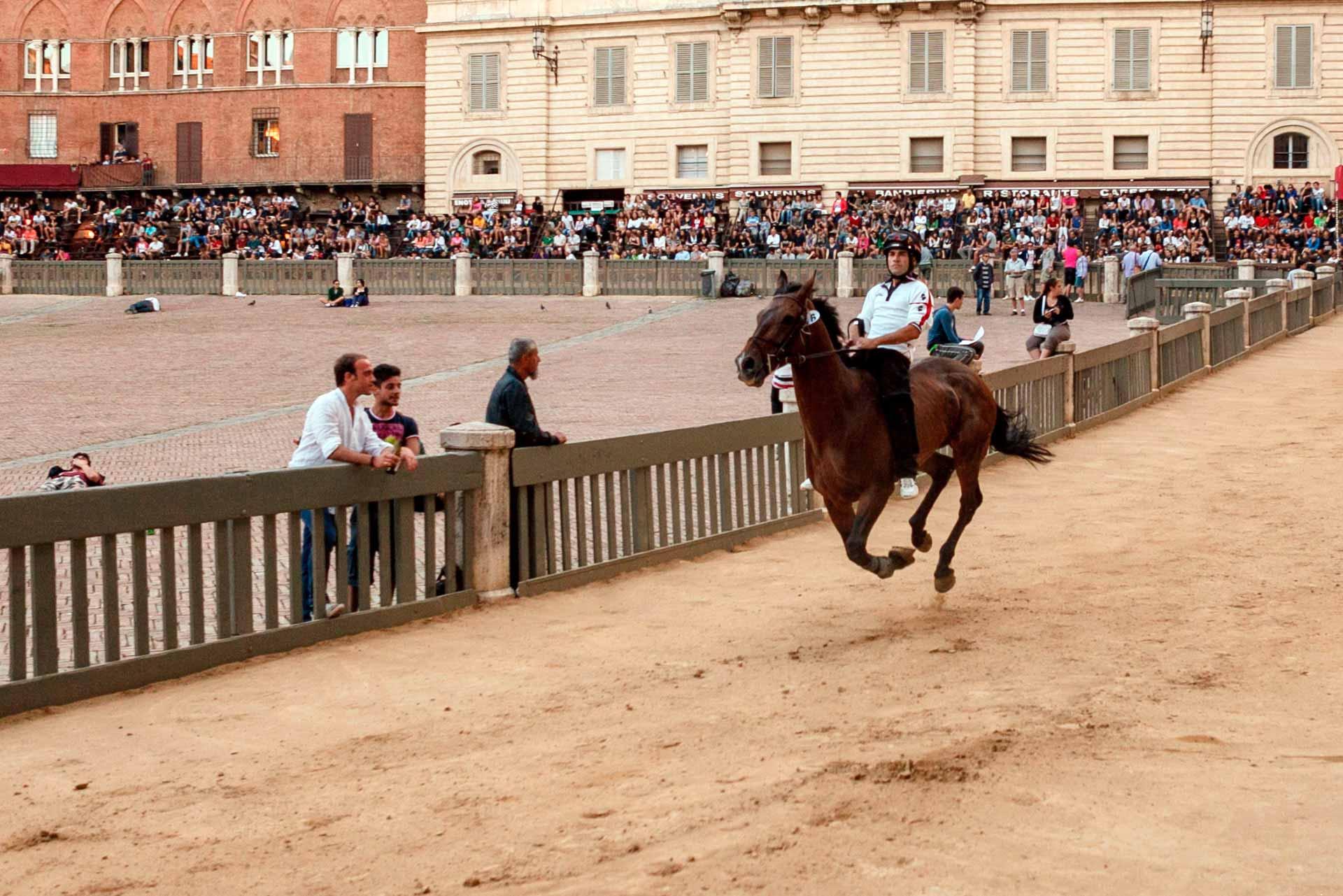"""LES COURSES DE NUIT - Le """"Test de nuit"""" est la premi?re occasion offerte aux chevaux de tester le terrain de comp?tition o? seuls dix d'entre eux s'affronteront le jour du Palio."""