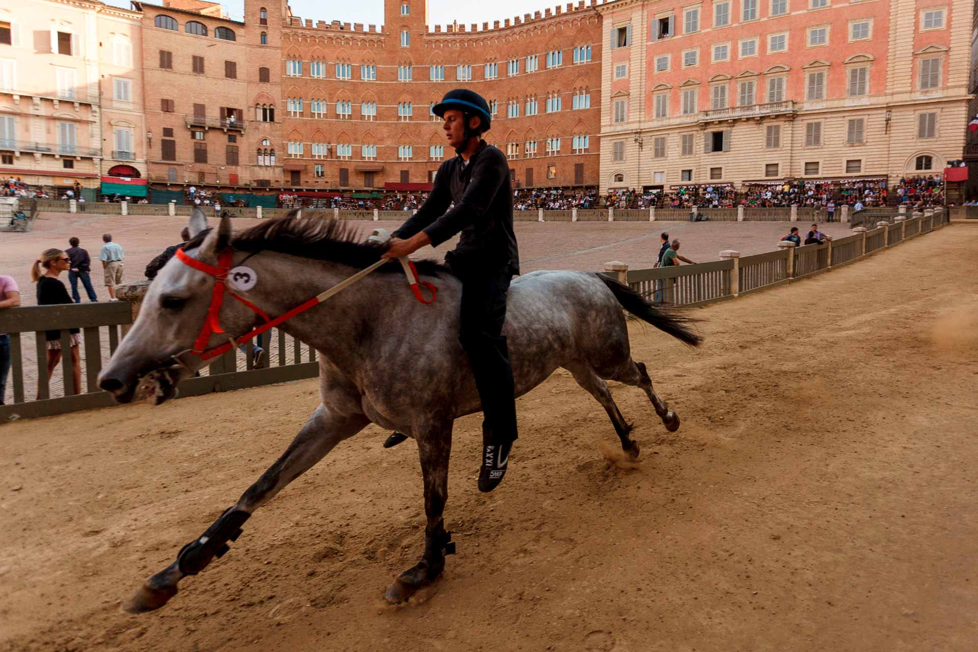 THE NIGHT RACES - The ?Night Trial? is the first opportunity offered to the horses to try the competition ground where only ten of them will compete on the day of the Palio.