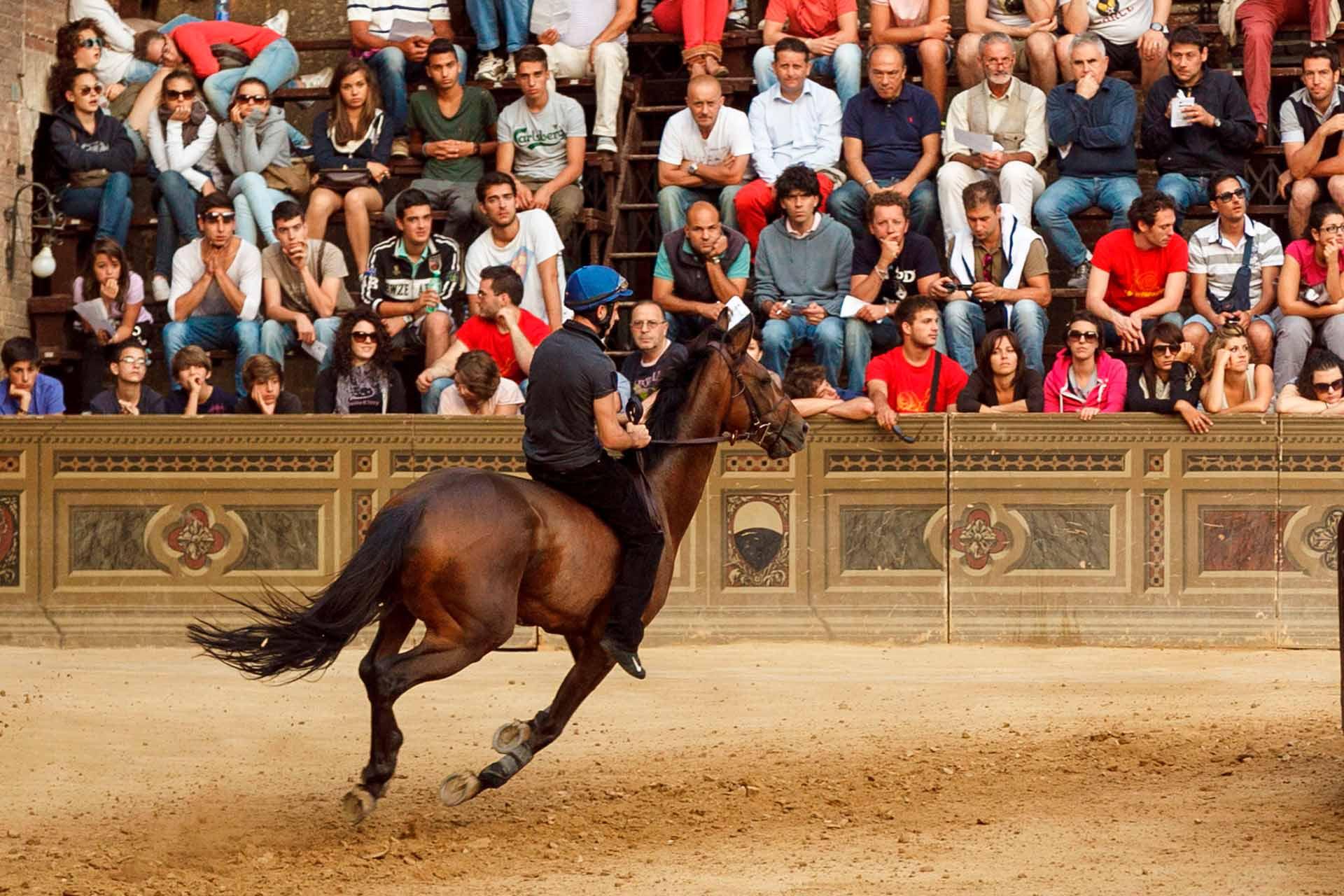 LE CORSE DI NOTTE - La ?Prova di Notte? ? la prima opportunit?, offerta ai cavalli, per provare il terreno di gara dove soltanto dieci di loro si confronteranno nel giorno del Palio.