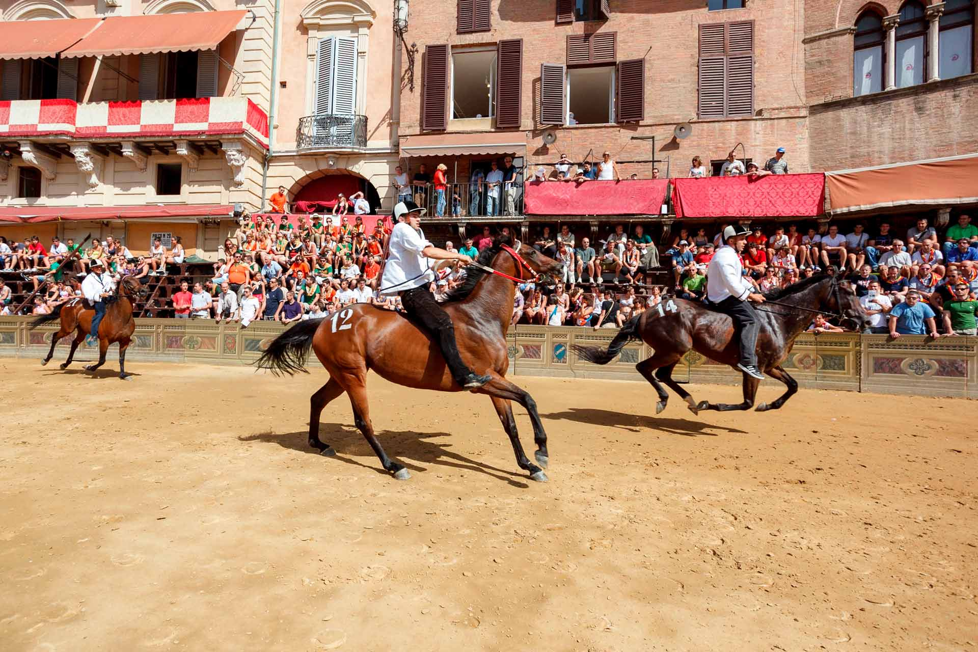 LA TRATTA ? All the horse selection heats foreseen by the program follow one another on the track. Each single jockey can also try more than one horse.