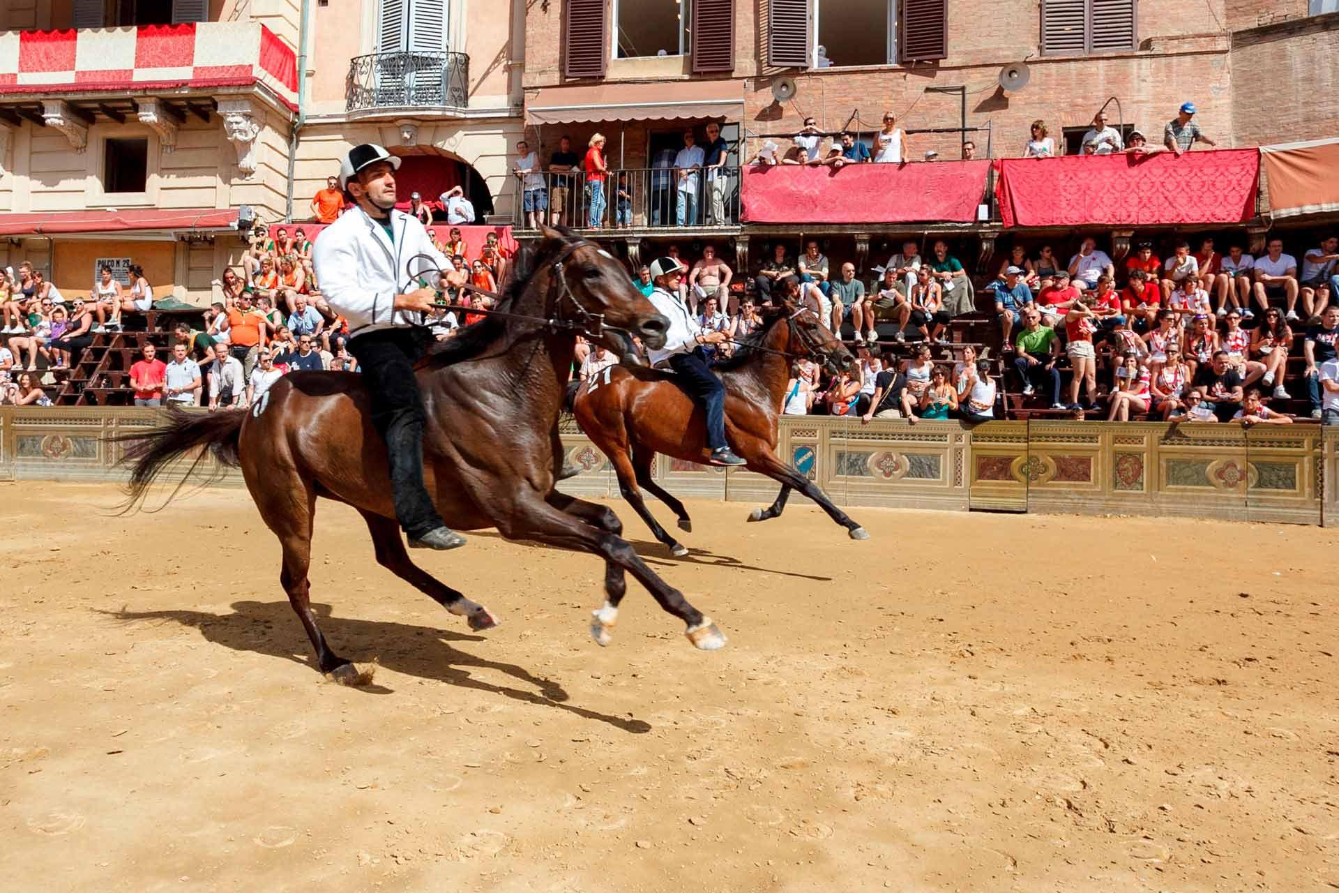 LA TRATTA - I fantini nei tre giri di pista, dovranno cercare di comprendere i punti forza e di debolezza dei cavalli che montano.