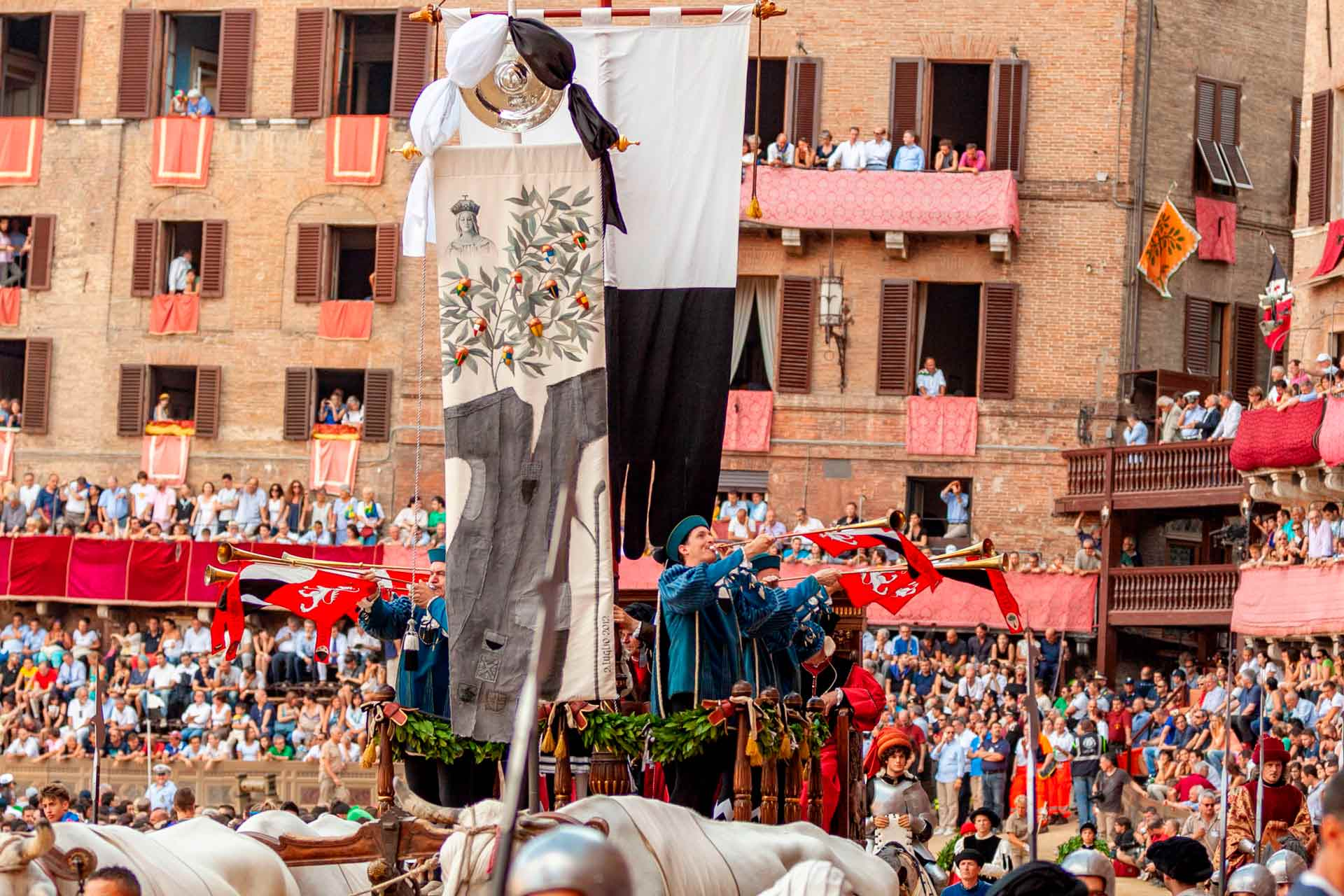 """ON TRACK FOR THE""""CARRIERA"""" ? The procession is closed by the Carroccio pulled by four oxen. On the Carroccio there are the four of ?Balia?, a ?Palio-carrying? attendant, a ?Valletto? playing the """"Martinella"""" and six ?Trombetti?."""